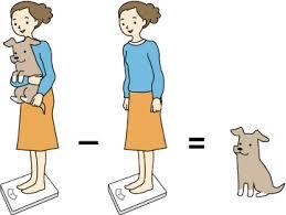 como pesar um cão
