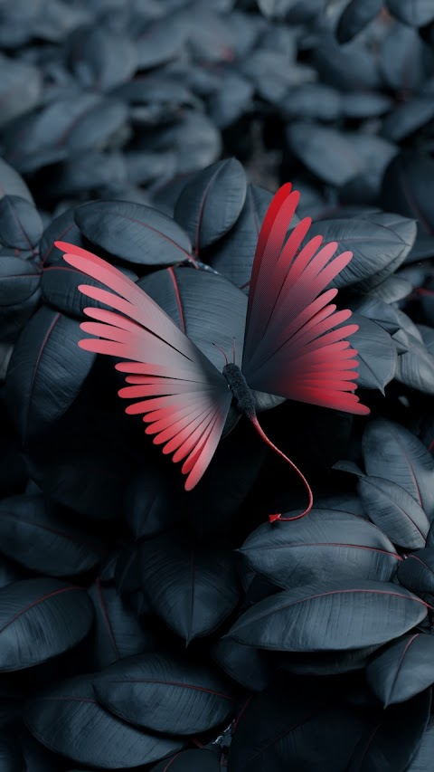 Con bướm yêu tinh