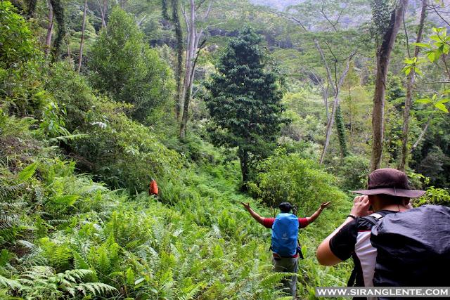Mt. Hamiguitan itinerary