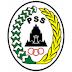 Jadwal & Hasil PSS Sleman 2017
