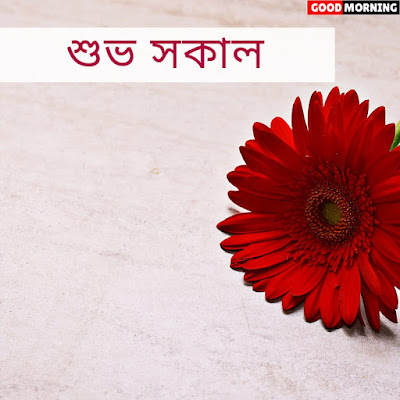 Shubho Shokal Images