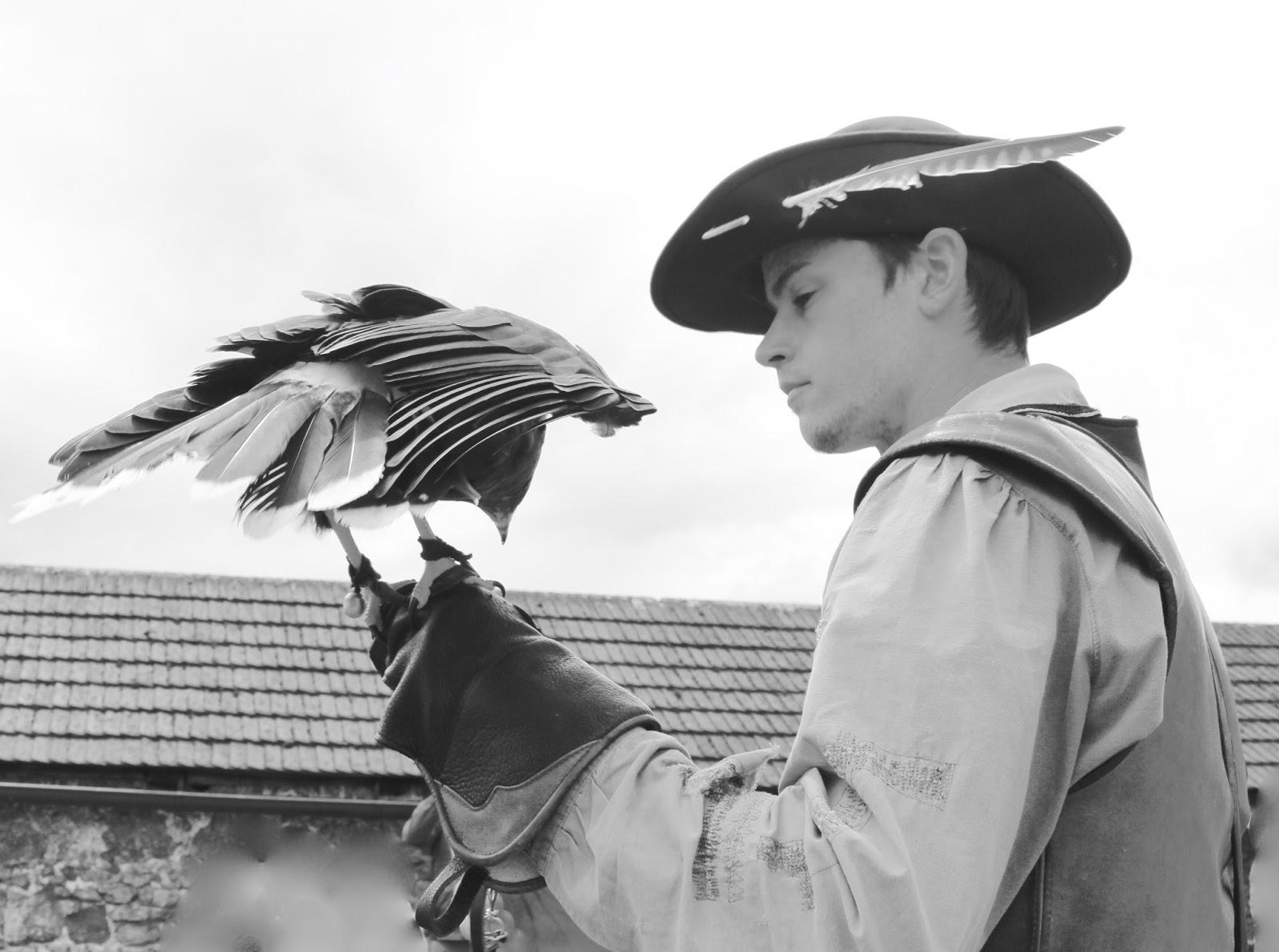 Was für ein Anblick! Der Falkner und sein Adler bei der Arbeit. Festung Hohenwerfen.