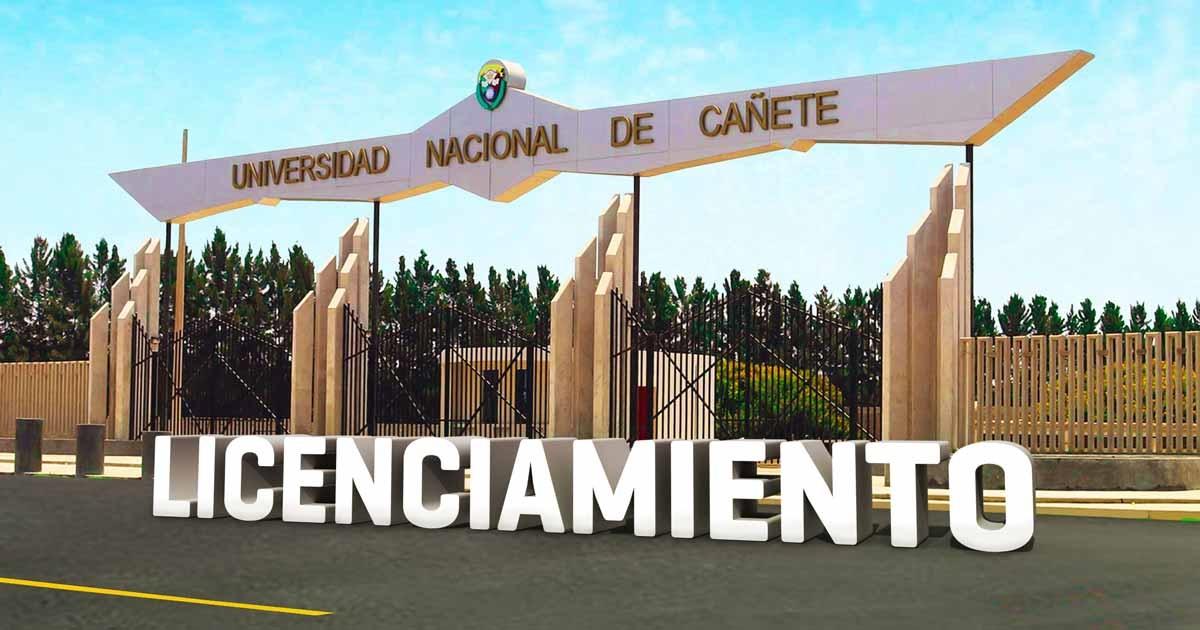 Universidad Nacional de Cañete - UNDC