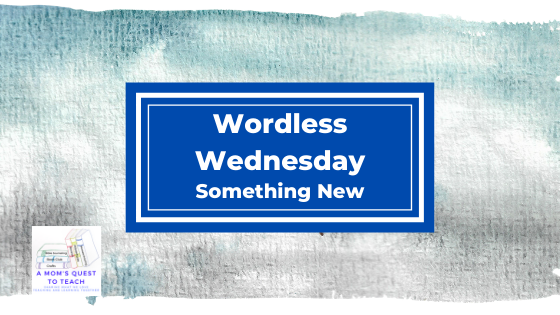 Wordless Wednesday: Something New; A Mom's Quest to Teach Logo