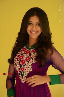 Actress Pooja Jhaveri Latest Stills in Purple Salwar Kameezt at Dwaraka Success Meet  0063.JPG