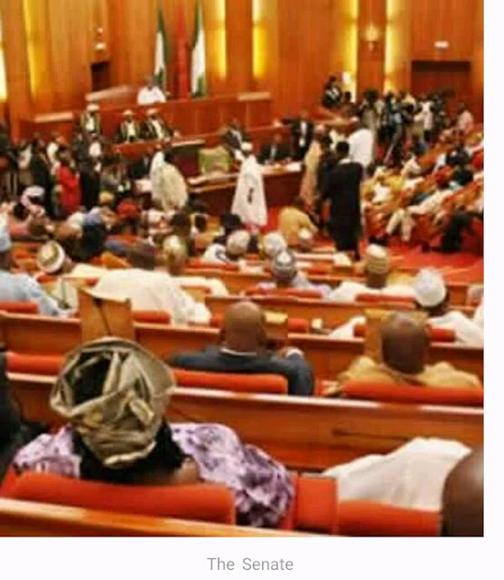Senate approves names of Nigeria Ambassadors for Buhari second term administration, full list and their designation