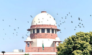 can-not-withdraw-case-sc