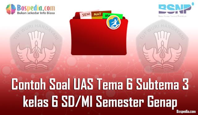 Contoh Soal UAS Tema 6 Subtema 3 untuk kelas 6 SD/MI Semester GenapTerbaru