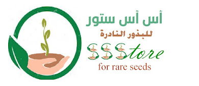 أس أس ستور SSStore