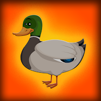 G2J Baby Mallard Duck Esc…