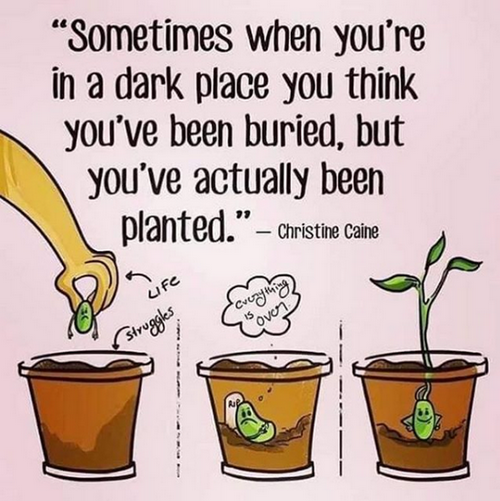 I've actually been planted
