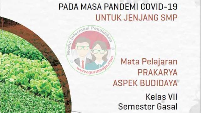 Download Modul PJJ Prakarya Budidaya Kelas 7 SMP Semester 1 GANJIL