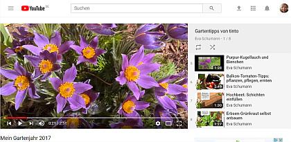 Gartenvideos von mir bei YouTube