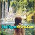 Bin Tere Novel By Shah Rukh Gull Pdf Free Download