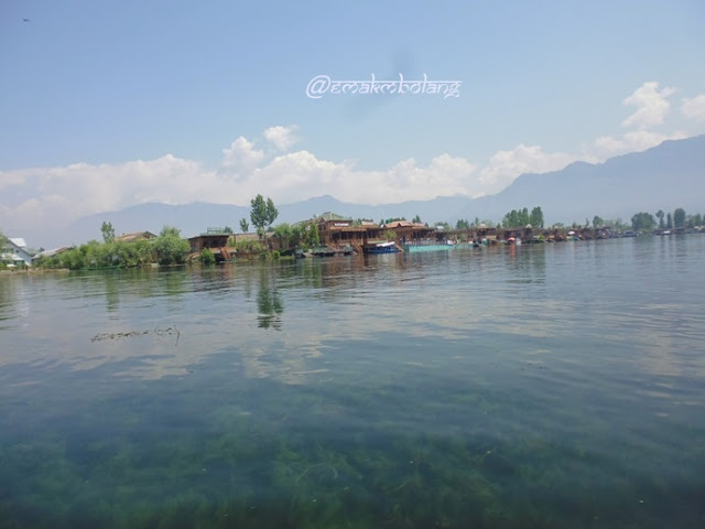 Dal Lake, Kashmir, India