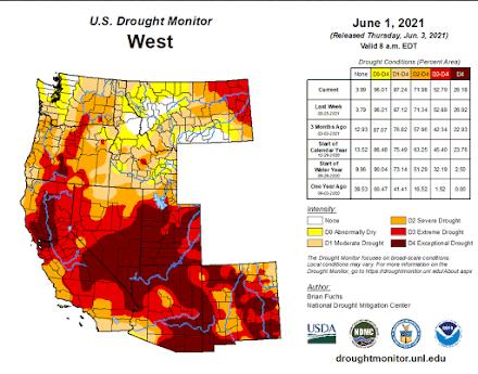 Οι πληγές του Φαραώ : Την χειρότερη ξηρασία εδώ και αιώνες βιώνει η Καλιφόρνια
