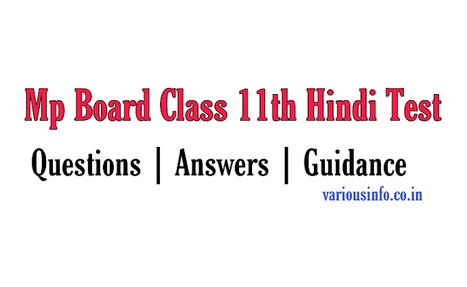 Class 11th Hindi Revision Test Solve Pdf Download 2020