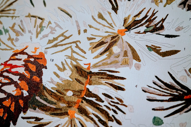 Paint by numbers pinecones