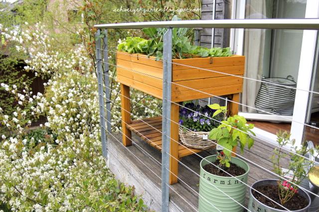 ein schweizer garten s ulenobst in metallf ssern und hochbeete auf dem balkon. Black Bedroom Furniture Sets. Home Design Ideas