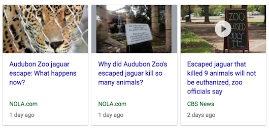 26 39 | Was the jaguar attack at the New Orleans Audubon Zoo of July 14, 2018 an NFL riddle?