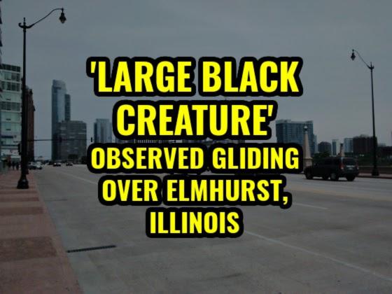 'Large Black Creature' Observed Gliding Over Elmhurst, Illinois