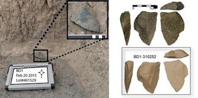 Gli strumenti di pietra sono stati trovati vicino al fossile più antico attribuito al genere Homo.