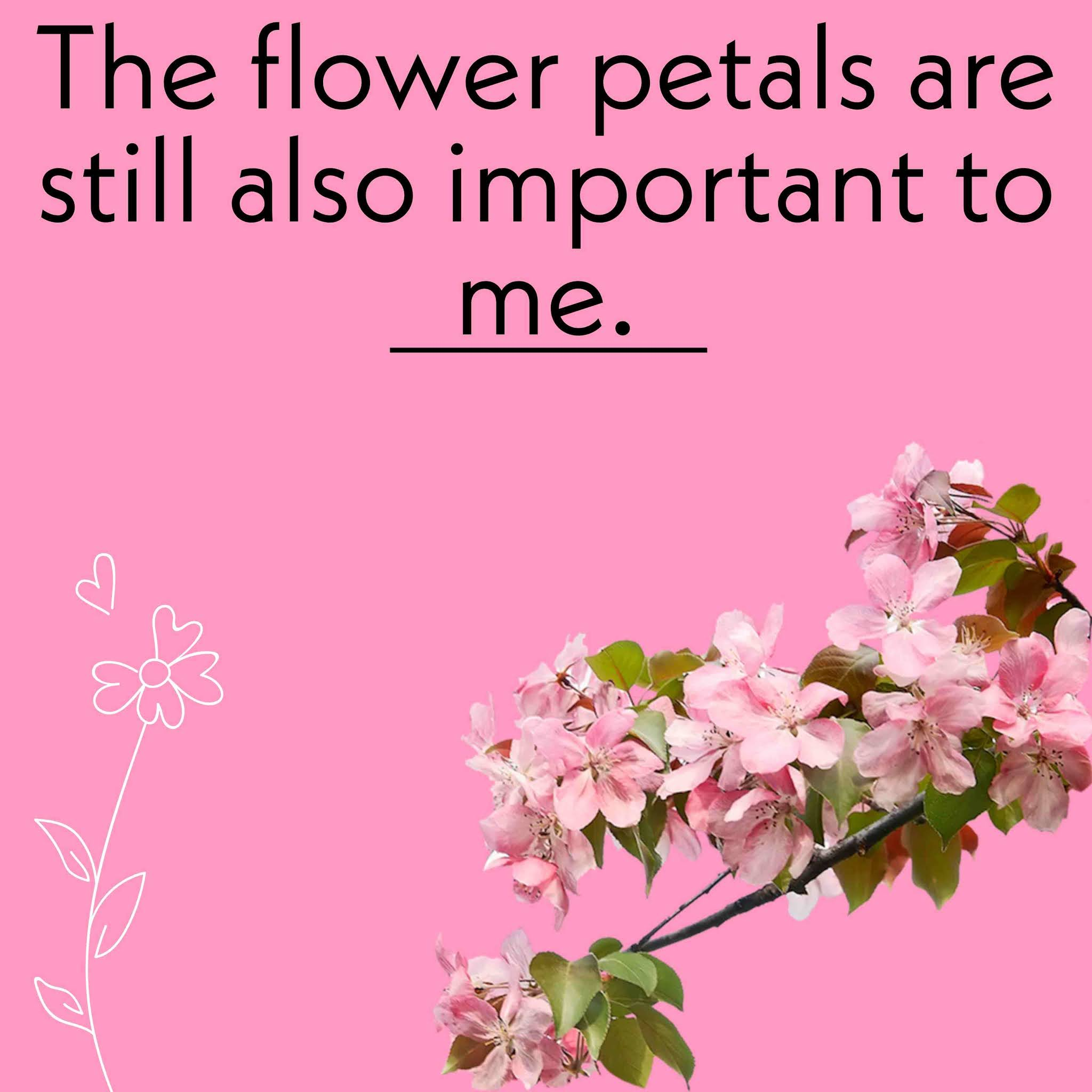 Pink Flowers Captions, cute and best flower captions
