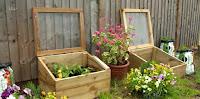 David Domoney  garden