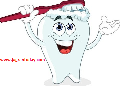 Maintain the Health of Teeth