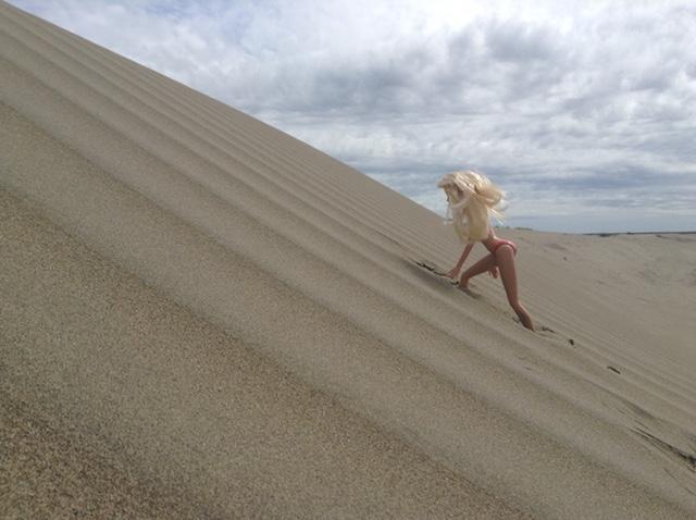 """Résultat de recherche d'images pour """"à poils au dune de pyla"""""""