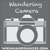 https://www.whimsandfancies.com/wandering-camera-music/