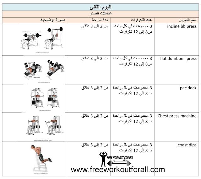 جدول تمارين كمال أجسام 5 أيام تمارين عضلة الصدر