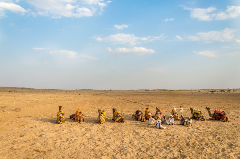 Camels and camel drivers in Sam Desert Jaisalmer