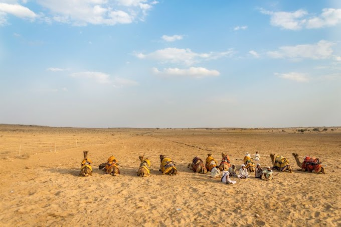 A Tryst with Royalty - Bikaner & Jaisalmer - Day 4 - Sun and Sand
