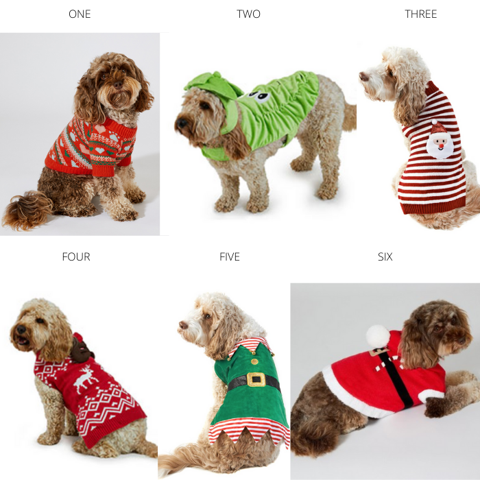 A Roundup of the Best Dog Christmas Jumpers 2019