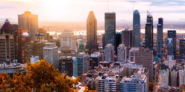 Programa busca profissionais de TI do Brasil para trabalhar no Canadá