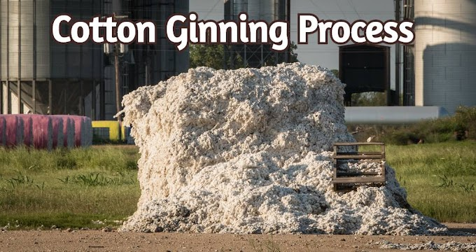What Is Cotton Ginning Briefly Describe The Process