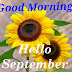 Top 10 Good Morning Hello September Images, Pictures, Photos, Greetings for WhatsApp