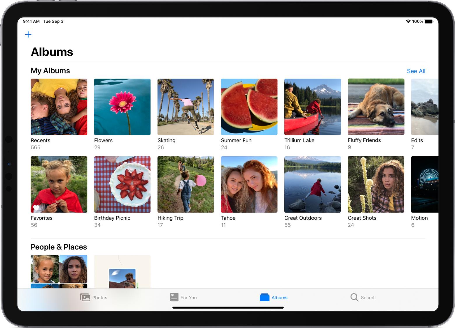 Organiza fotos Gallery MobileMe