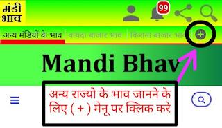 Mandi-Bhav-Today