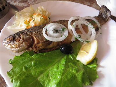Forel Russia
