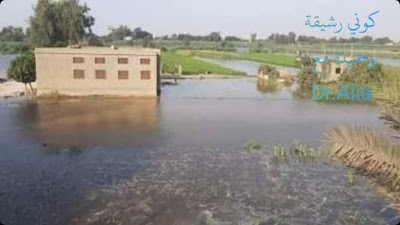 فيضان النيل فى مصر مؤشر ربانى لازالة المخالفات على النيل