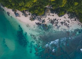 Persebaran terumbu karang