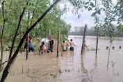 Mahasiswa KKN Kebangsaan Kembangkan Wisata Mangrove di Desa Kuala Lagan