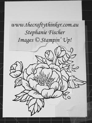 #thecraftythinker, #stampinup, #cardmaking, #stampinblends, #rubberstamping, Stampin' Blends, Birthday Blooms, Stampin' Up Australia Demonstrator, Stephanie Fischer, Sydney NSW, Overlapping a frame