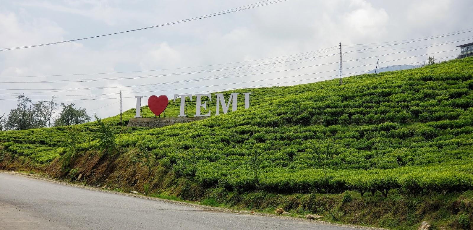टेमी टी गार्डन, ईस्ट सिक्किम