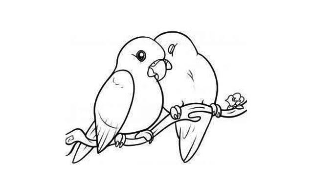 dibujos faciles amor pajaritos