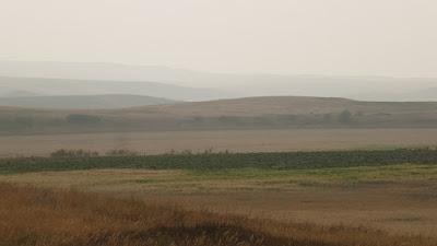 Cypress Hills, Eagle Butte, landscape, forest fire, smoke