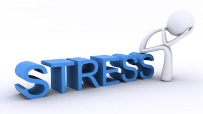 Gestire lo Stress e la stanchezza mentale: Libri e risorse