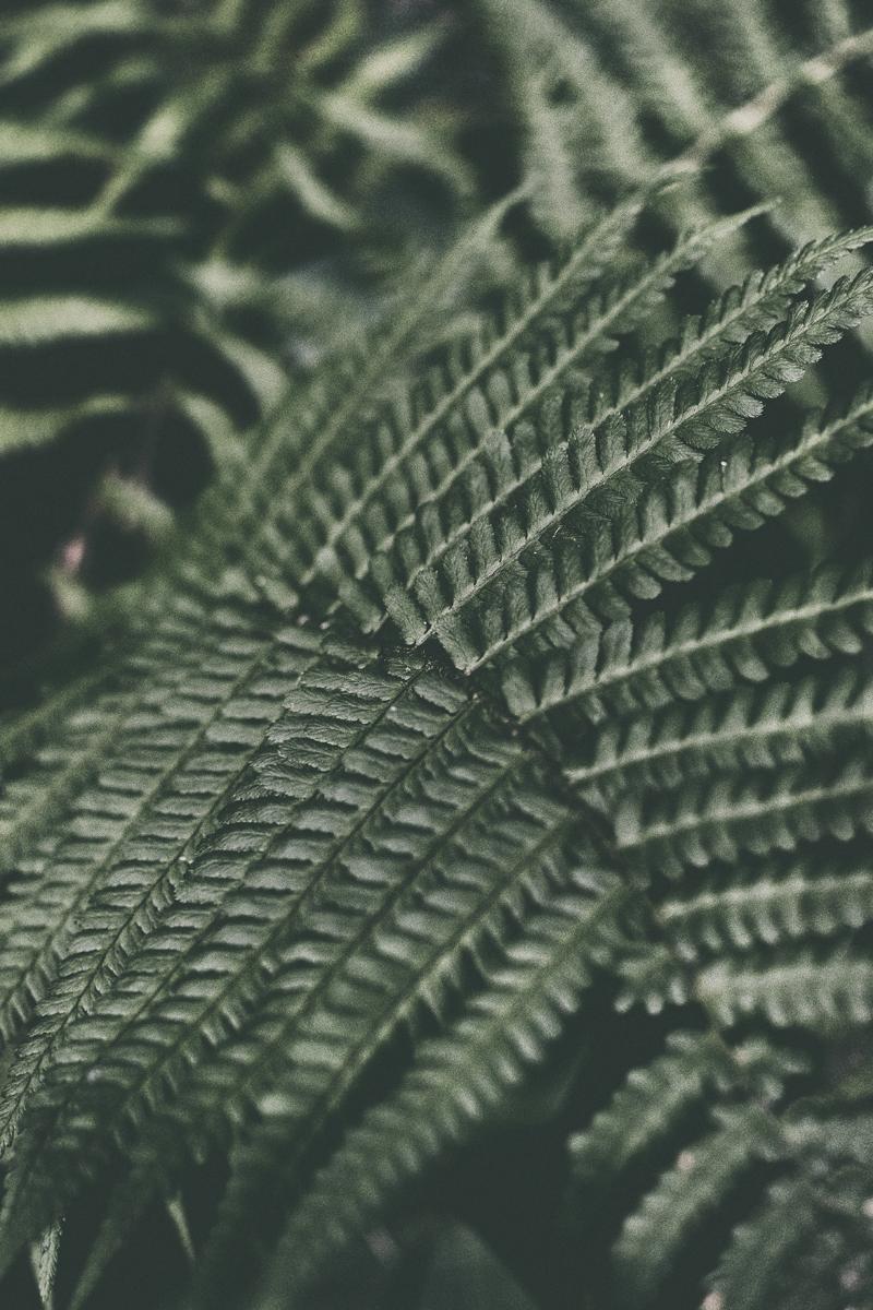suomi, finland, helsinki, myhelsinki, visithelsinki, outdoors, landscape, outdoorphotography, photographer, valokuvaaja, Frida Steiner, Visualaddict, vaokuvausblogi, visualaddictfrida